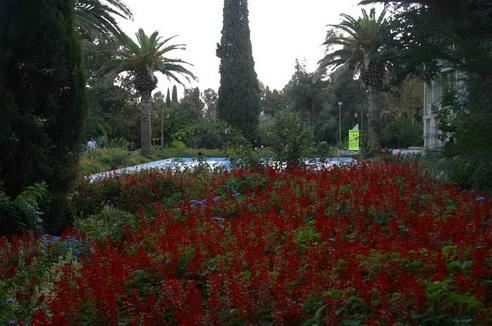 باغ ارم شيراز