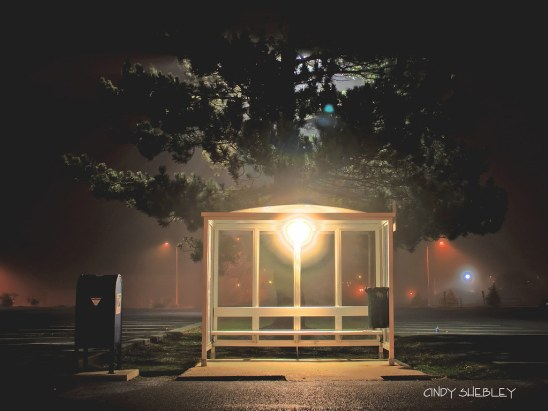 the bus stop by pugetsoundphotowalks, on Flickr