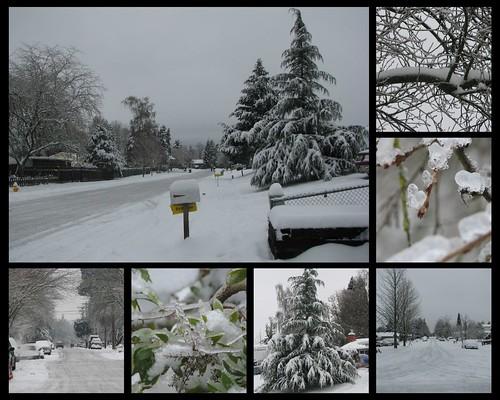 December 21 Snow