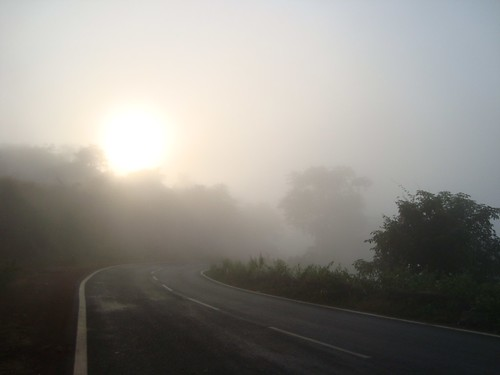 The Sun, The Fog, The Road