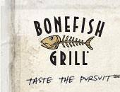 from the boneflsh websites logo