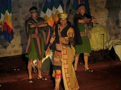 Fenaco Cusco 2008, desfile