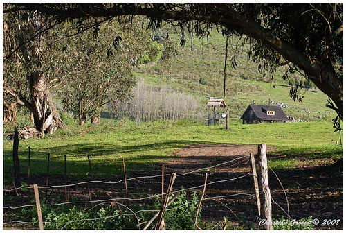 "IMG_9710 • <a style=""font-size:0.8em;"" href=""http://www.flickr.com/photos/20681585@N05/2971649522/"" target=""_blank"">View on Flickr</a>"