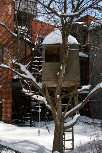 snow_0993.jpg