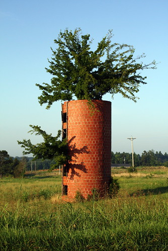 Tree in a Silo!