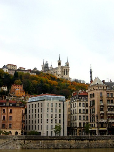 Fall colors in Lyon. So pretty!