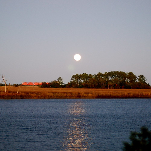 The moon rises over the the tidal marsh