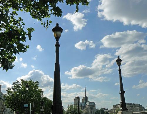 Notre-Dame between street lights