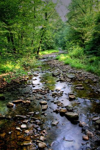 A Gentle Flow