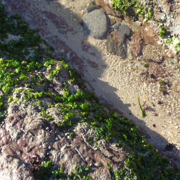 #183 - Walk on the beach