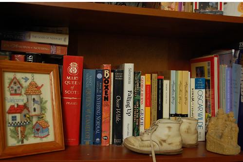 Bookshelf #6