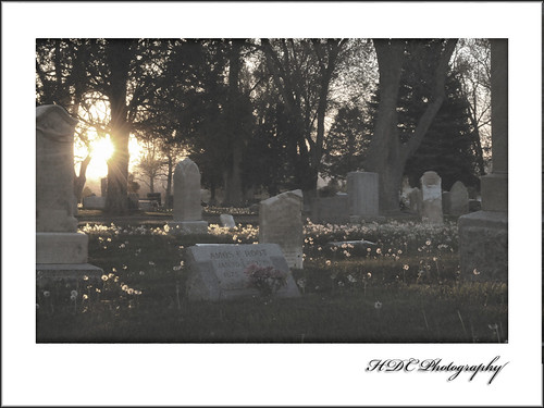cemetery-texture