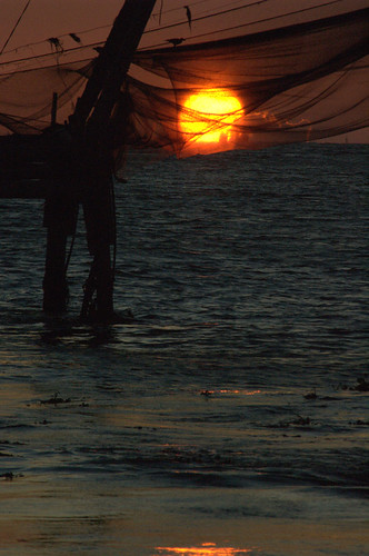 Caught in the nets