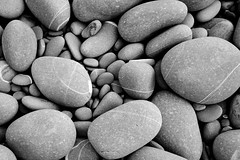 Stones from Westwood Ho! beach