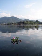 Las tranquilas (aunque un poco sucias) aguas del Phewa Tal