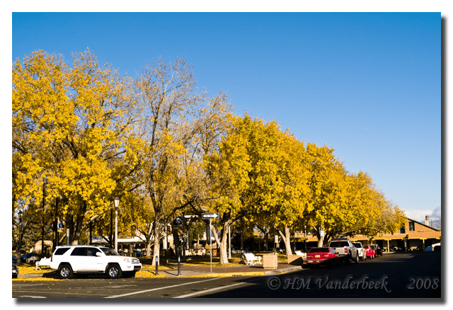 Autumn at Old Town Plaza