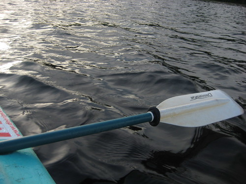 Right Paddle