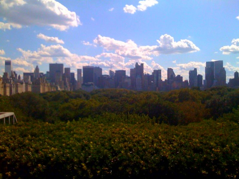Central Park and Midtown