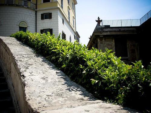 계단 난간 옆으로 철쭉이 심어져 있다.