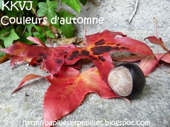 KKVJ - Couleurs d'automne