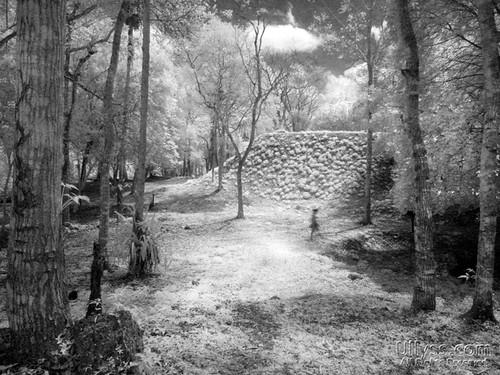 Uaxactun Mayan Ruins