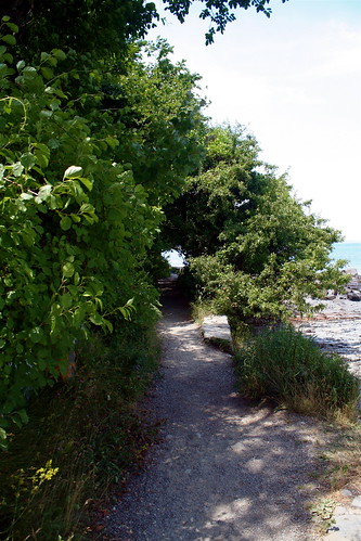 Shore Path