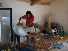 Outtanasana with Chair (Standing Forward Bend)