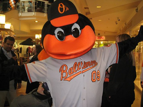 The Orioles bird sporting Baltimore
