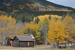 Historic cabins at Twin Lakes