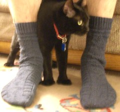 socks with evie