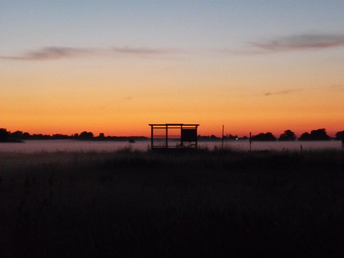 A misty bus stop at sunset