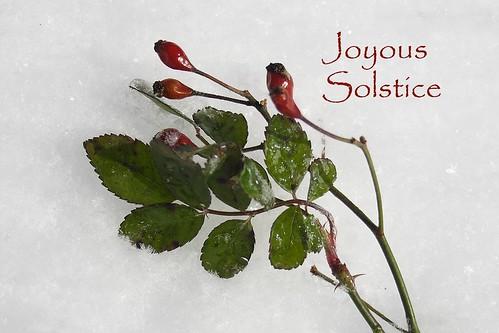 Joyous Solstice