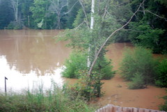 Flooding just beyond my back fence.