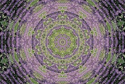 Purple & Green Kaleidoscope