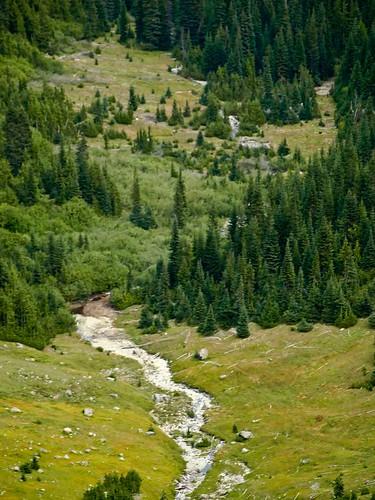 Mount Rainier National Park (2)