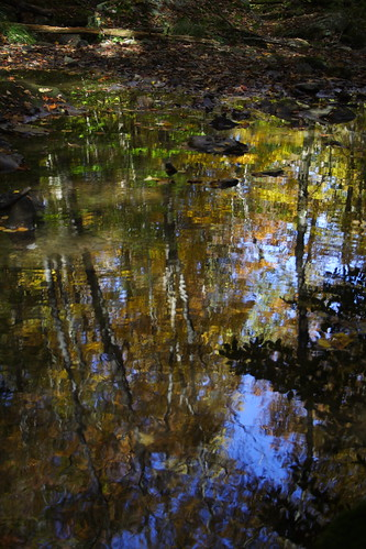 Reflections and Rocks 2