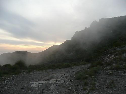 la niebla llega con el anochecer