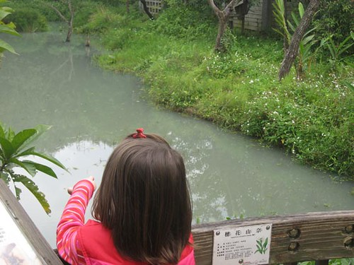 Jaylene Pond