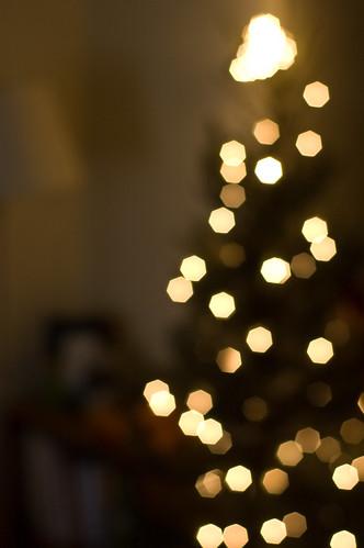 Merry Christmas! (by bookgrl)