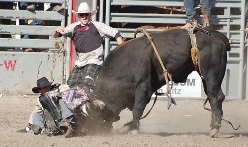 Bulle vs Cowboy