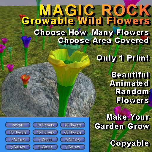 Magic Rock - Growable Wild Flowers