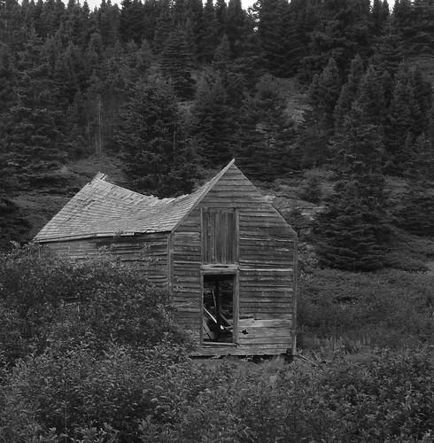 Well-ventilated barn