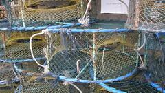 66.捕蟹籠