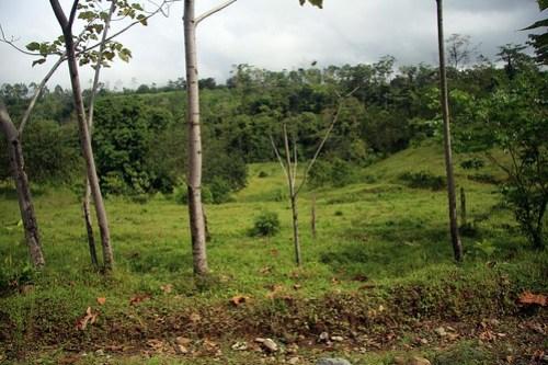 Costa Rica - Día 5 (363)