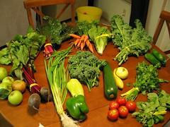 week 11 veggies
