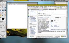 Windowlab