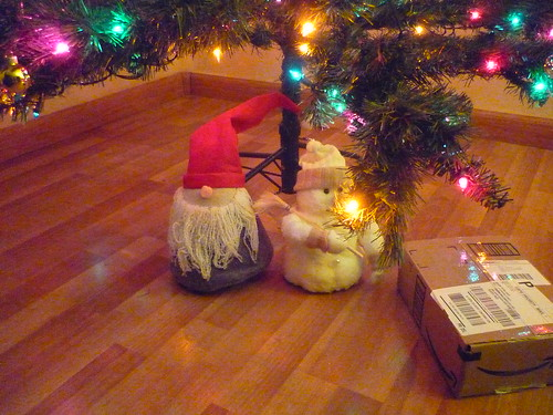 Only one xmas present under the tree...