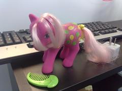 the team pink pwnies mascot