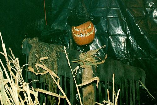 Scarecrowsm