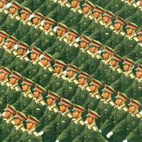 pla.army